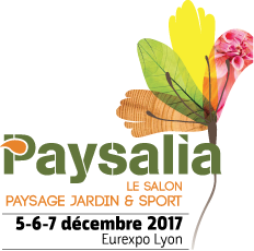 40_paysalia-banner.png